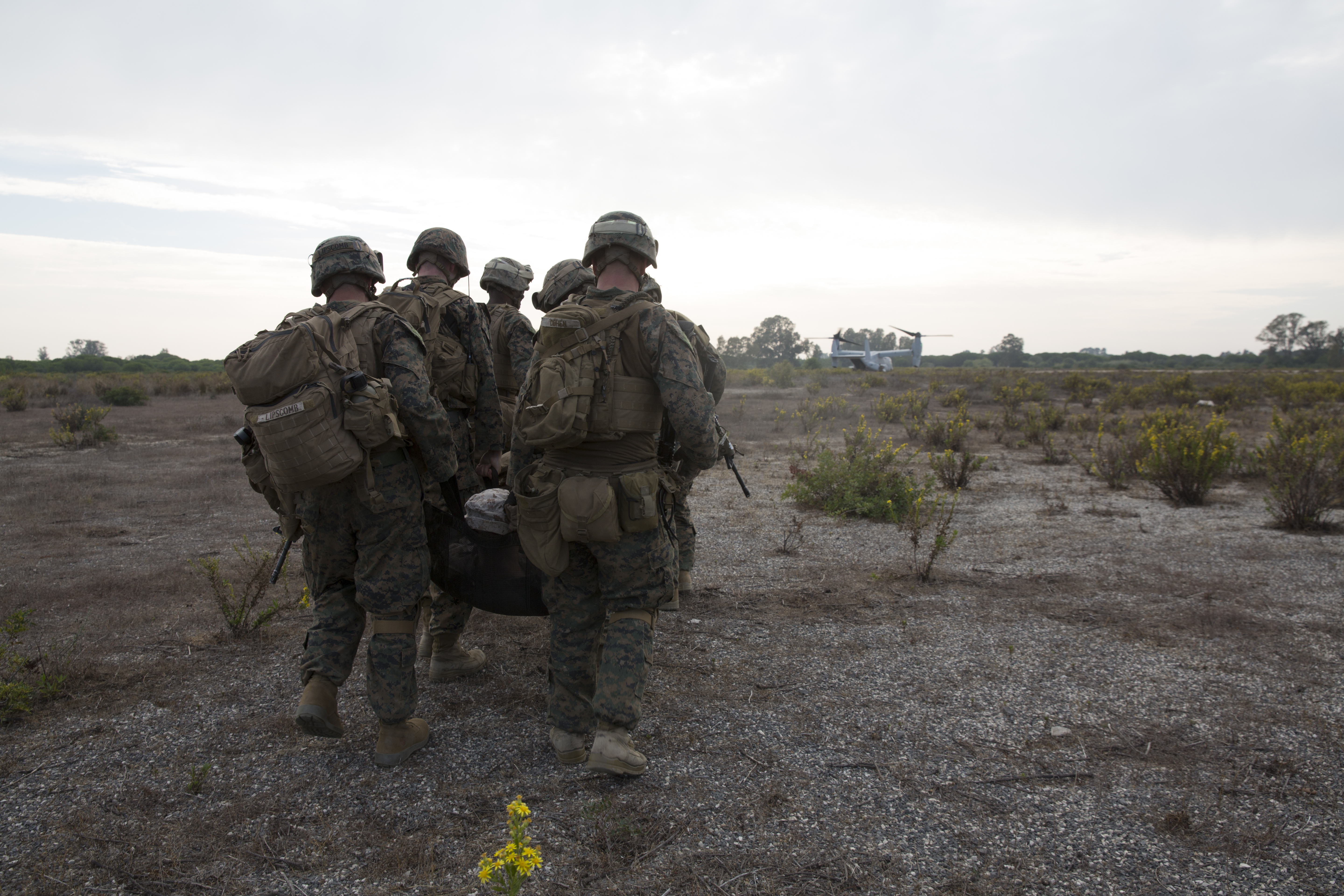U.S. Marines assigned to Special Purpose Marine Air Ground Task Force-Crisis Response-Africa carry a simulated casualty back to safety during an alert force drill at Naval Station Rota, Spain, Oct. 20, 2016. The purpose of the drill was to rehearse and assess the SPMAGTF's ability to integrate elements and respond to a time-sensitive crisis. SPMAGTF-CR-AF is designed to provide contingency support to U.S. Africa Command, including tactical recovery of aircraft and personnel, embassy reinforcement, support to noncombatant evacuation operations, humanitarian assistance, and disaster relief. (U.S. Marine Corps photo by Sgt. Jessika Braden/ Released)